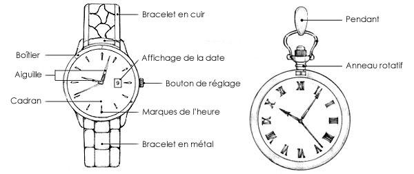 Structure d'une montre